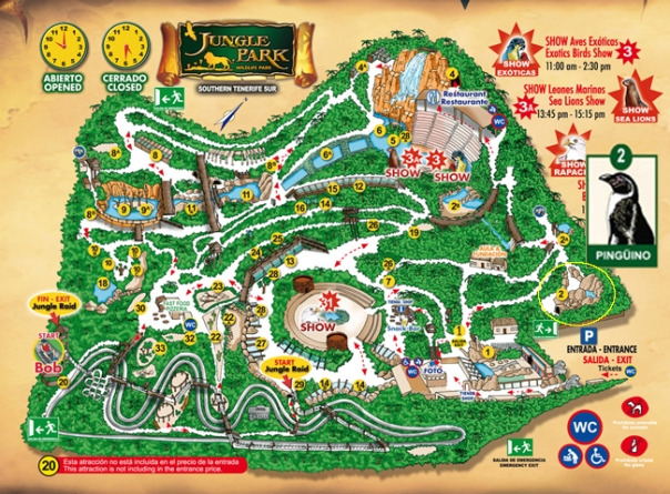 Mapa Jungle